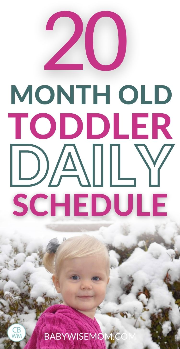 20 month old toddler daily schedule