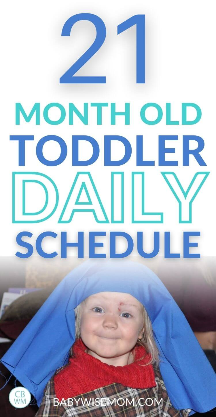 21 Month old toddler schedule