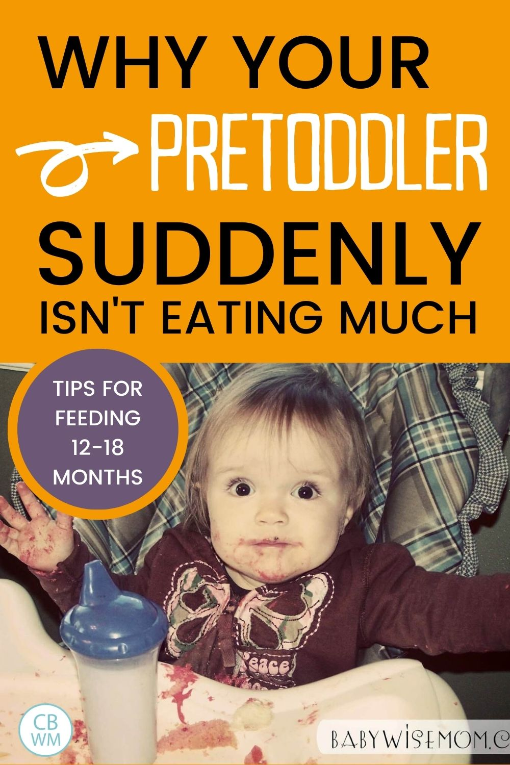 Pretoddler not eating much