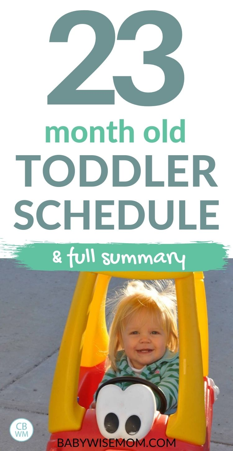 23 month old toddler schedule