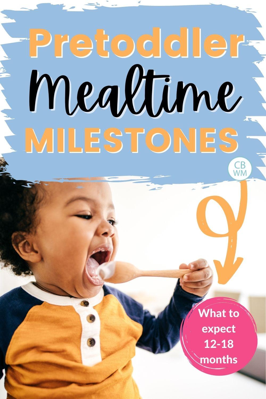 Pretoddler mealtime milestones pinnable image