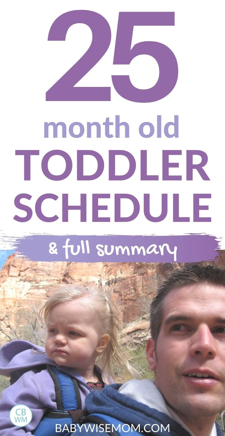 25 month old toddler schedule pin