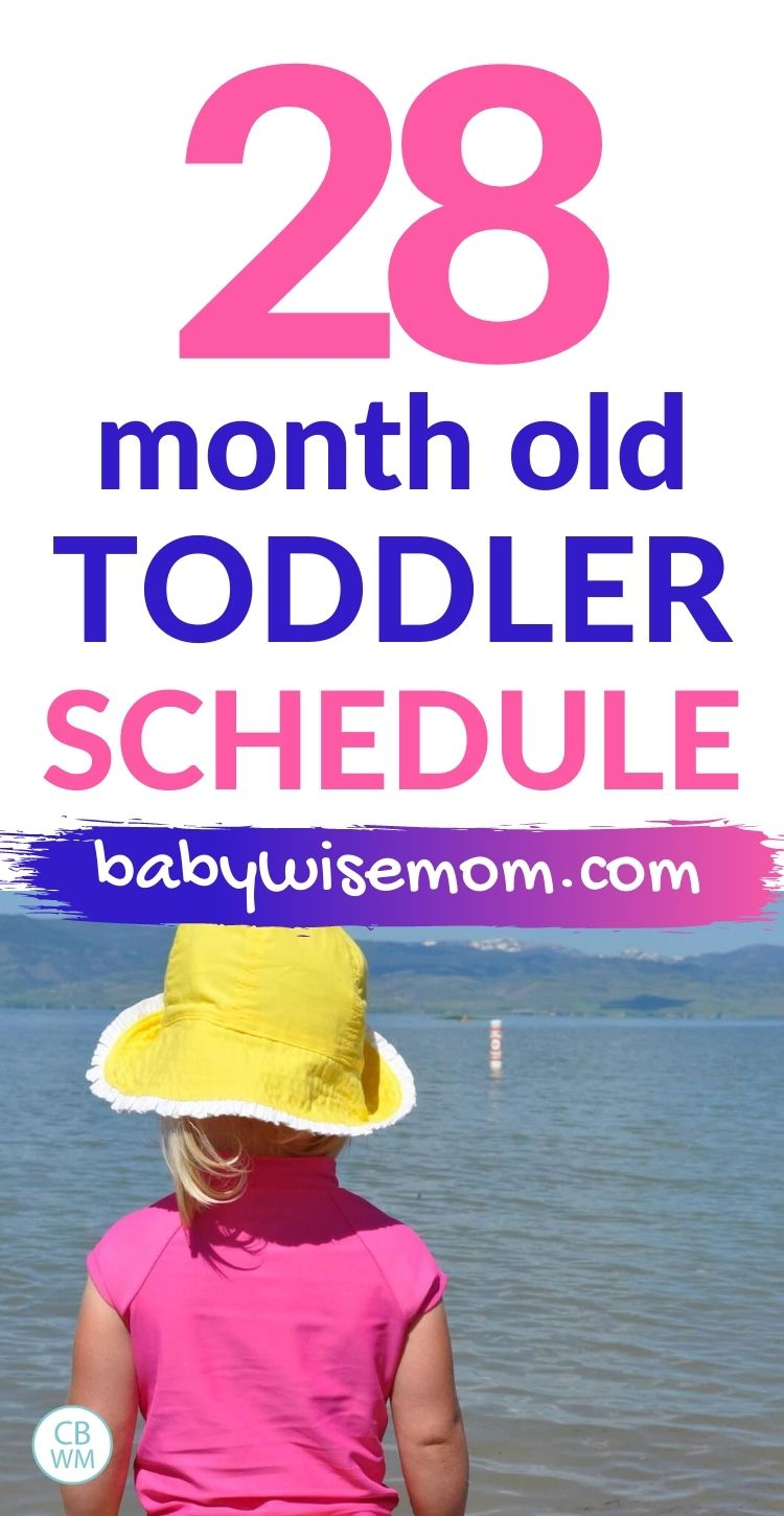 28 month old toddler schedule pinnable image