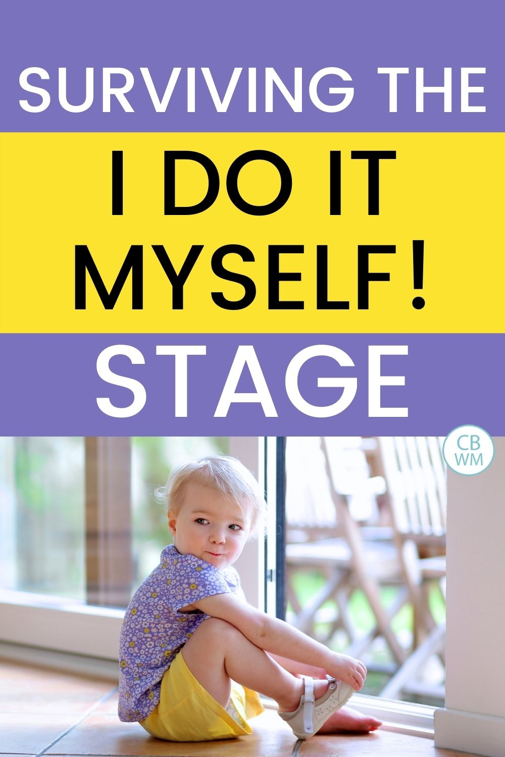Surviving do it myself stage pinnable image