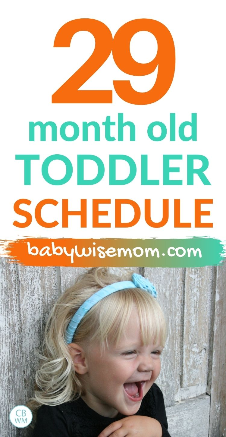 29 month old toddler schedule pinnable image