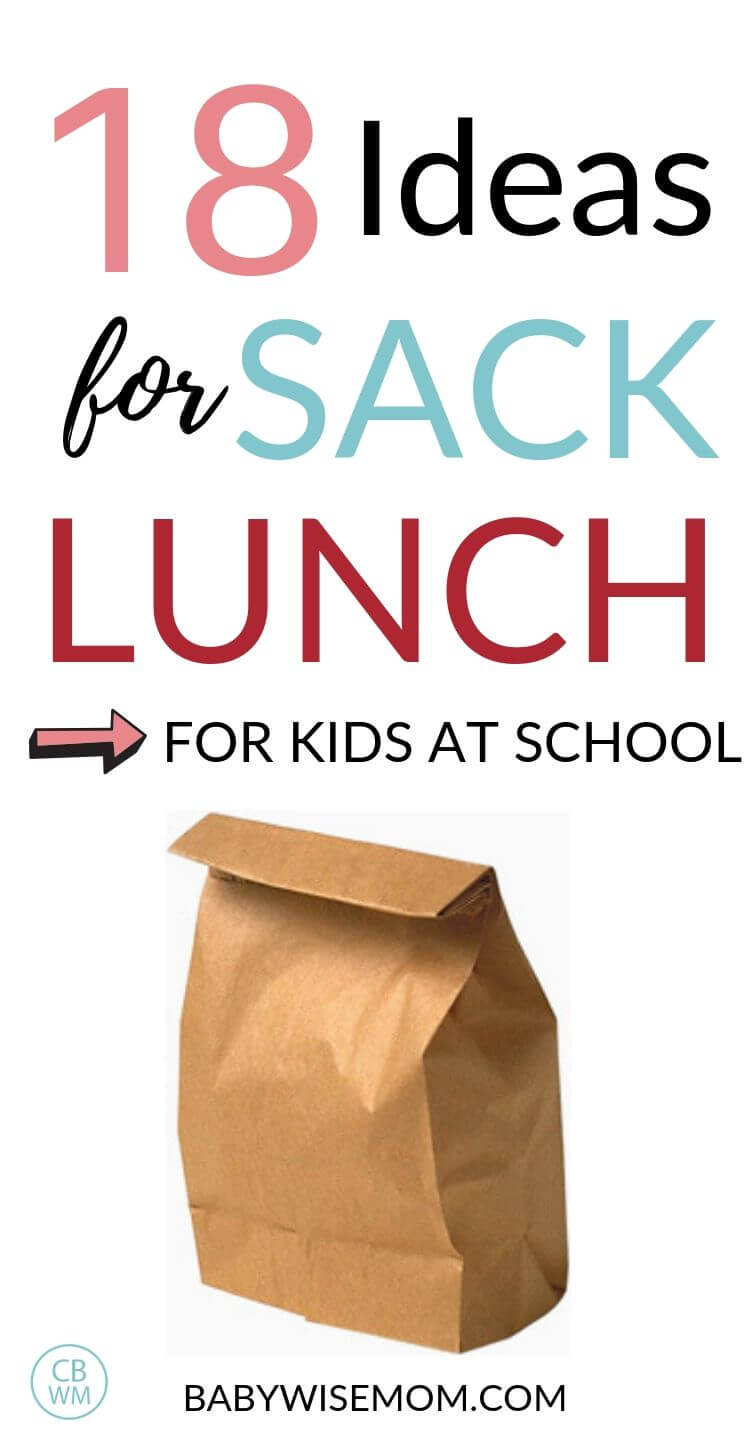 Sack Lunch Ideas pinnable image