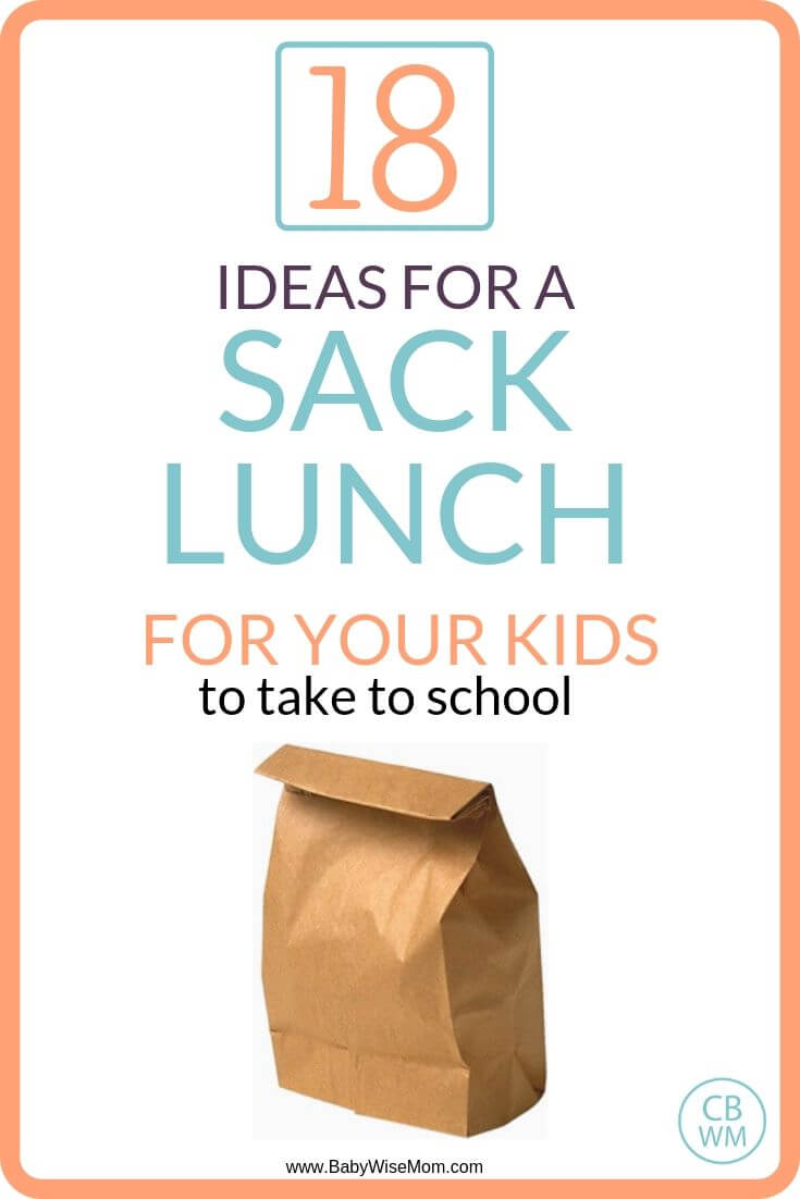 Sack lunch ideas for kids pinnable image