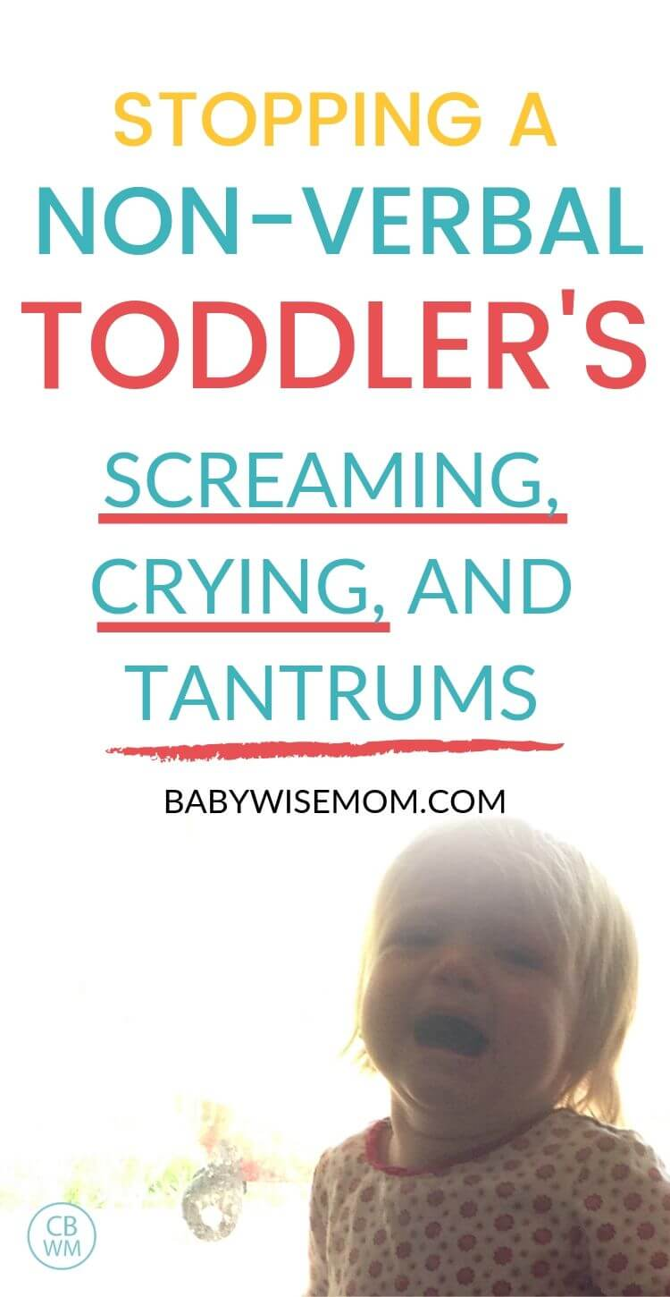Stopping the non-verbal toddler tantrums Pinnable Image