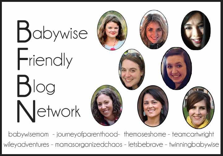 Babywise Friendly Blog Network