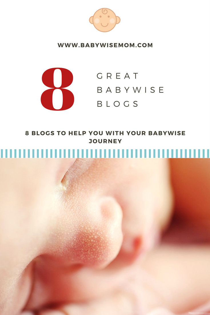 8 Great Babywise Blogs