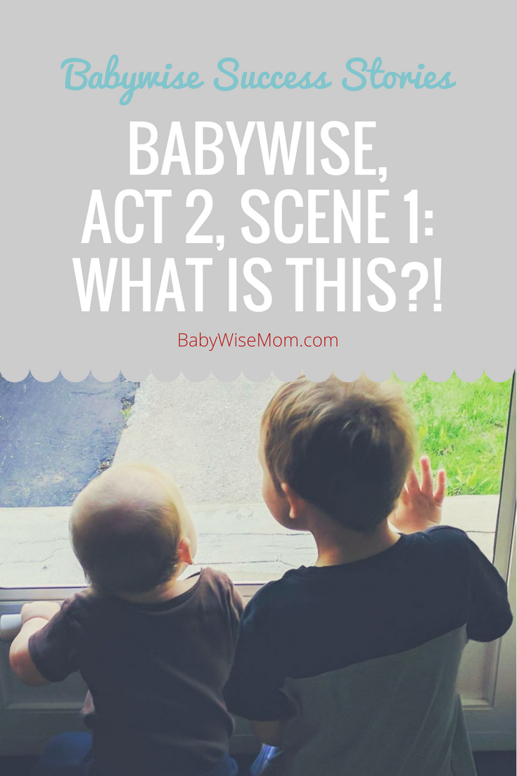 How Babywise helped through the second child, postpartum depression, and working.