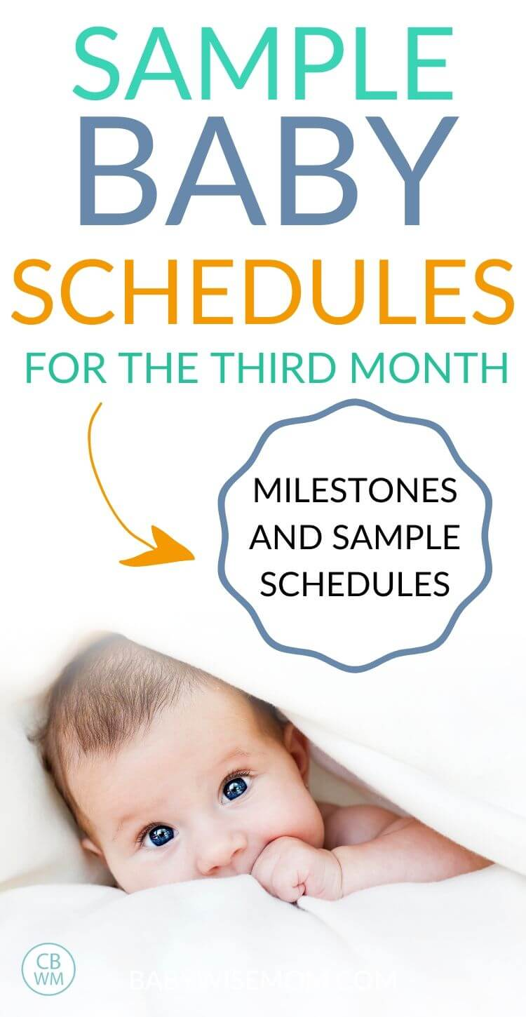 3 month old schedule pinnable image