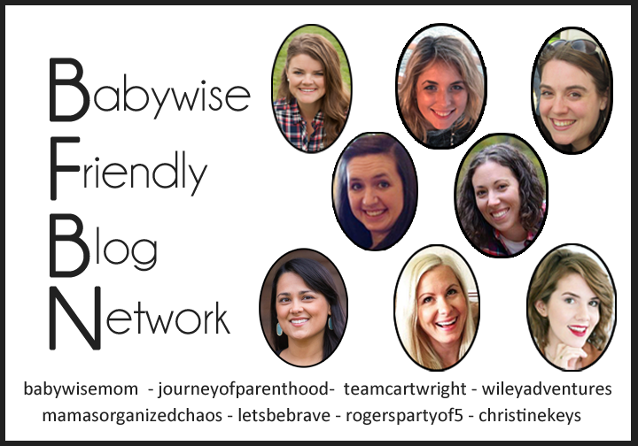 Babywise Friendly Blog Network