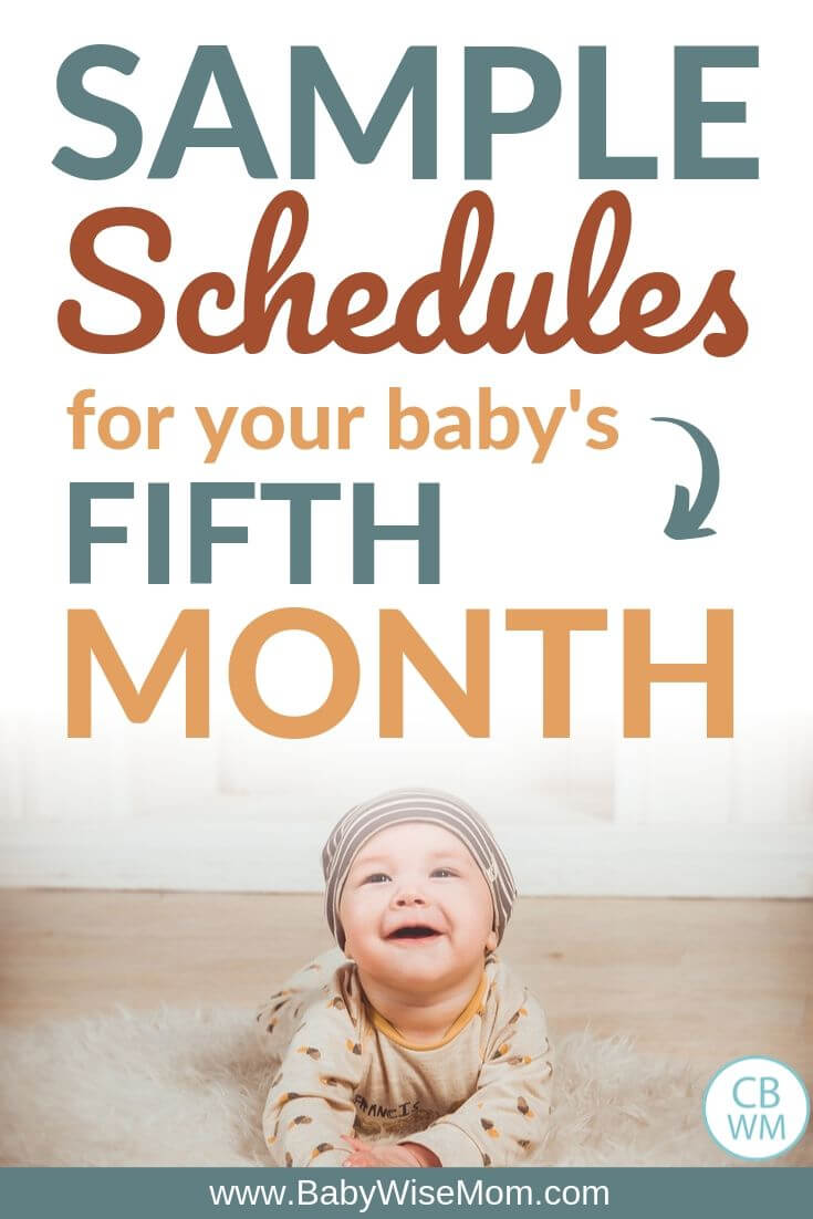 Sample Baby Schedules fifth month pinnable image