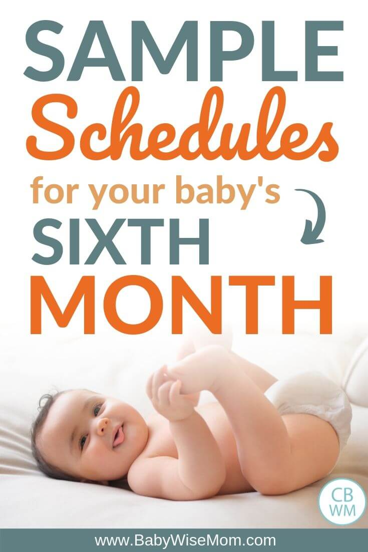 Sample Schedules for Baby sixth month Pinnable image