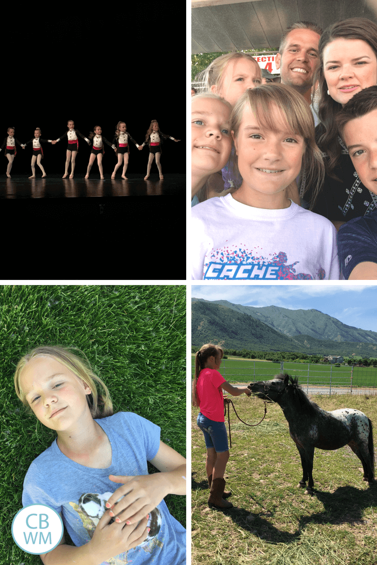 Dance recital, circus, bunny, and horses
