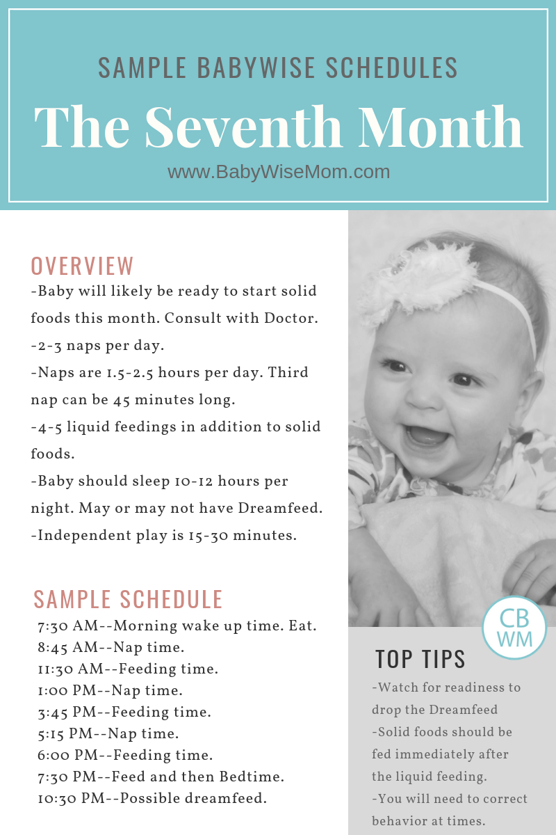 This post gives sample schedule Babywise schedules for the seventh month. The seventh month of baby's life comprises weeks 27-30. Baby is six months old. These are Babywise 6 Month Old Sample Schedules.