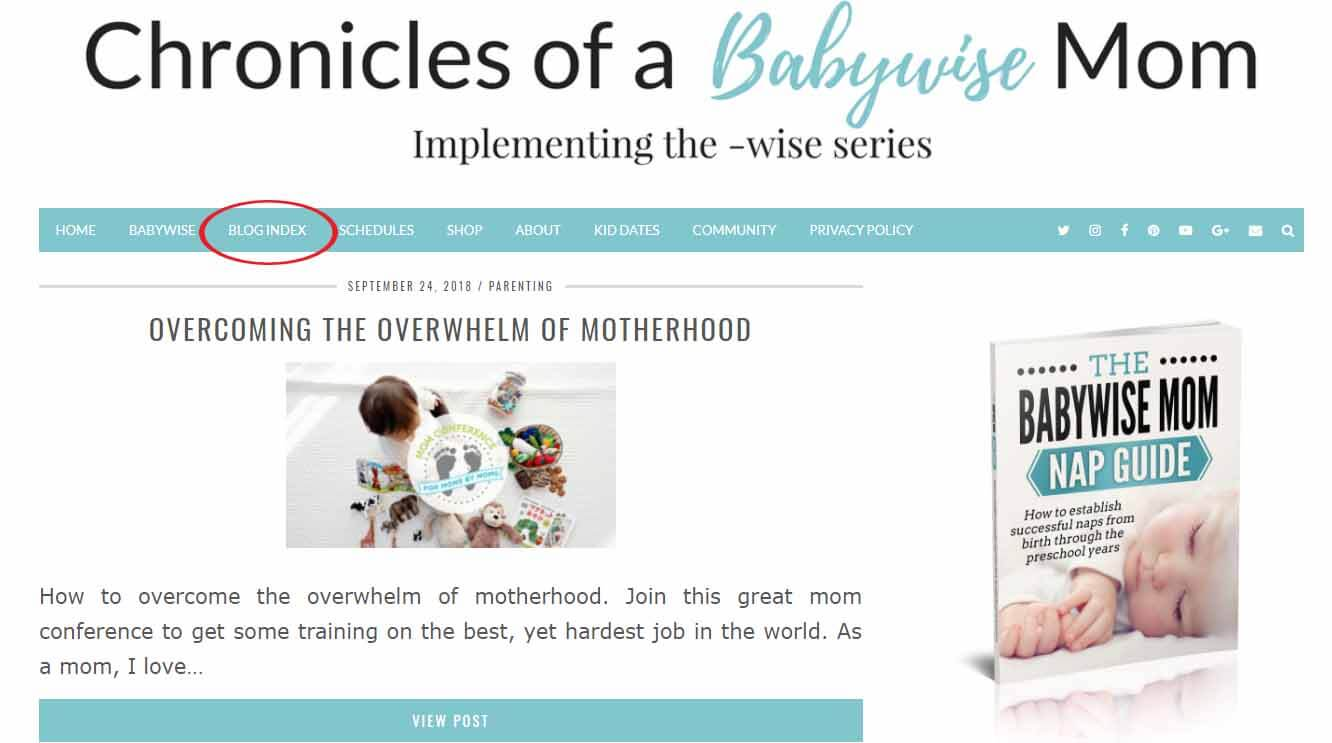 Chronicles of a Babywise Mom Blog Index Navigation Button