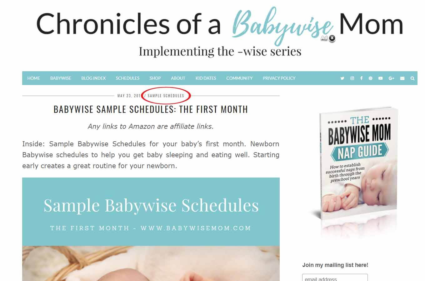 Search Chronicles of a Babywise Mom by category