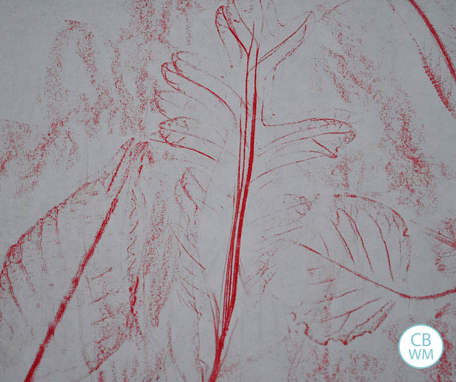Fall Leaf Rubbings Learning Activity