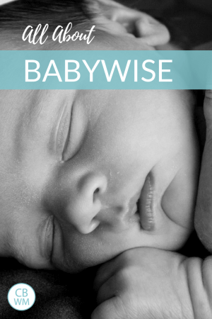Babywise (or Baby Wise). On Becoming Babywise, by Gary Ezzo and Robert Bucknam, is a baby sleep book. This book helps you to establish a schedule for baby with a picture of a newborn.