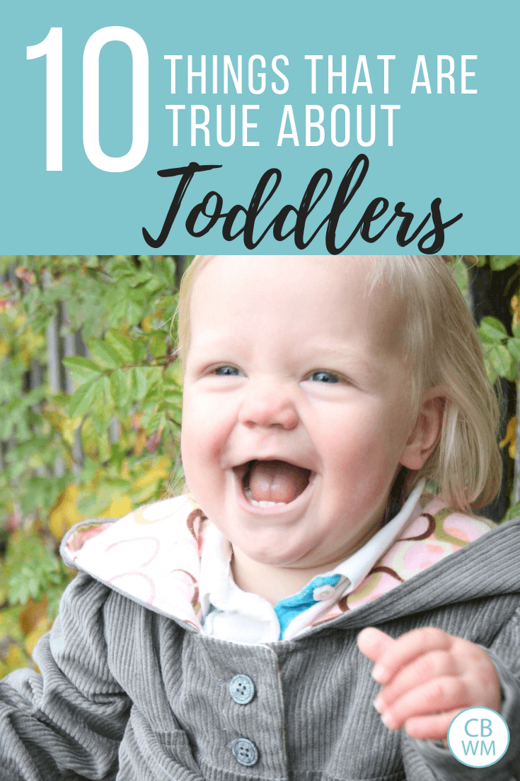 10 things that are true about toddlers. Parenting tips to help make parenting your toddler smoother and easier. Know what to expect in the toddler years.