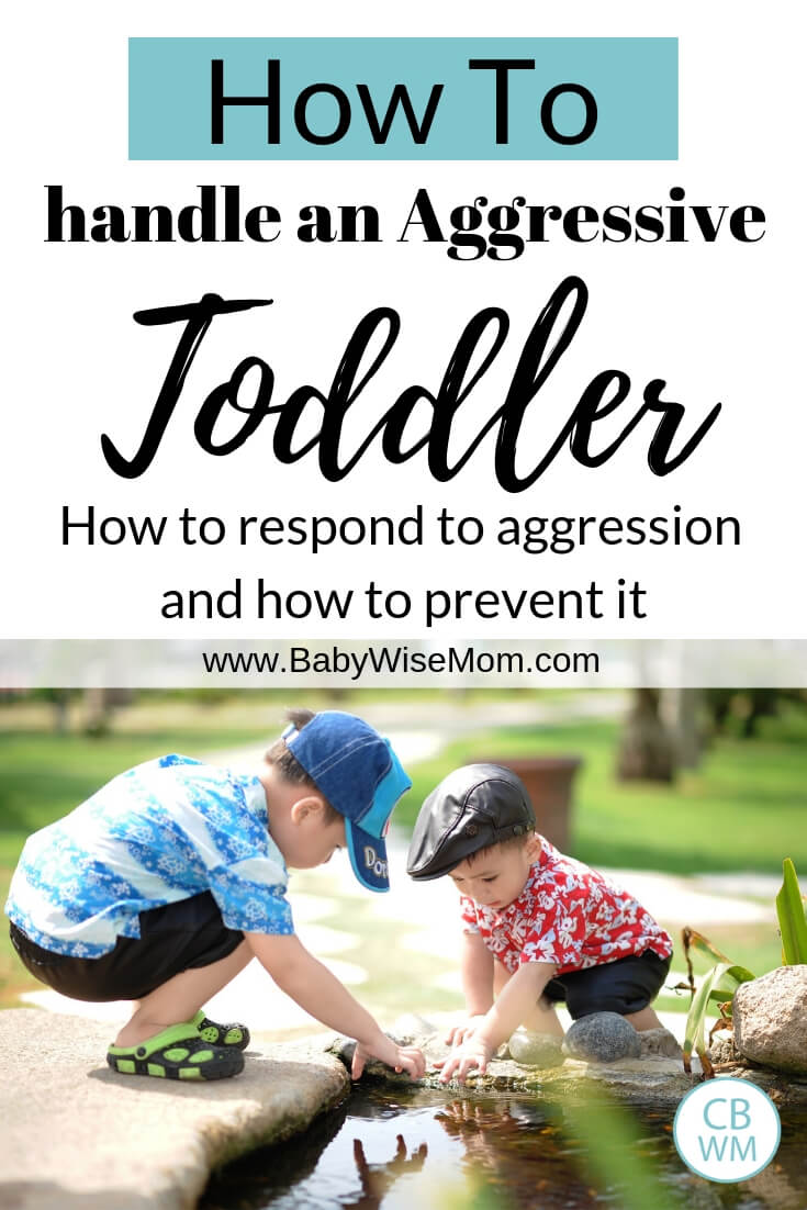 How to respond when your toddler or preschooler is hitting or hurting other chidlren. Appropriate consequences as well as how to prevent aggression in the future with a picture of two boys playing in water