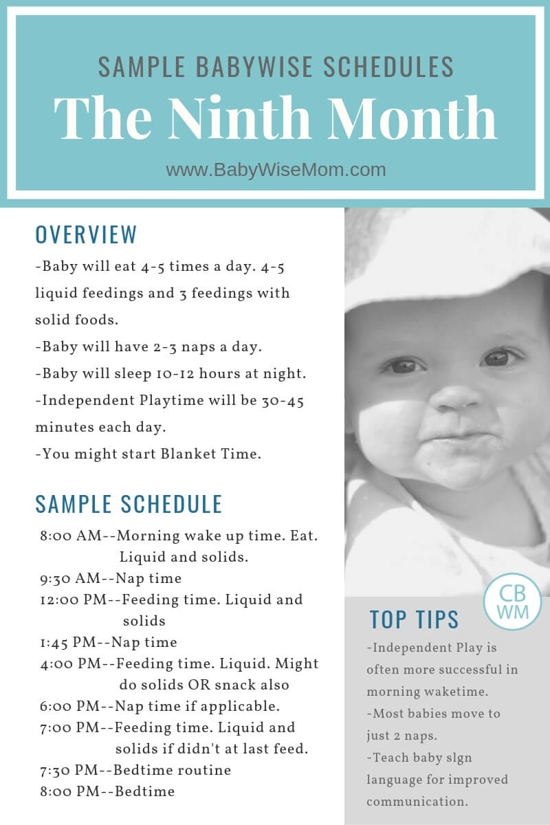 Babywise 8 month old schedule information