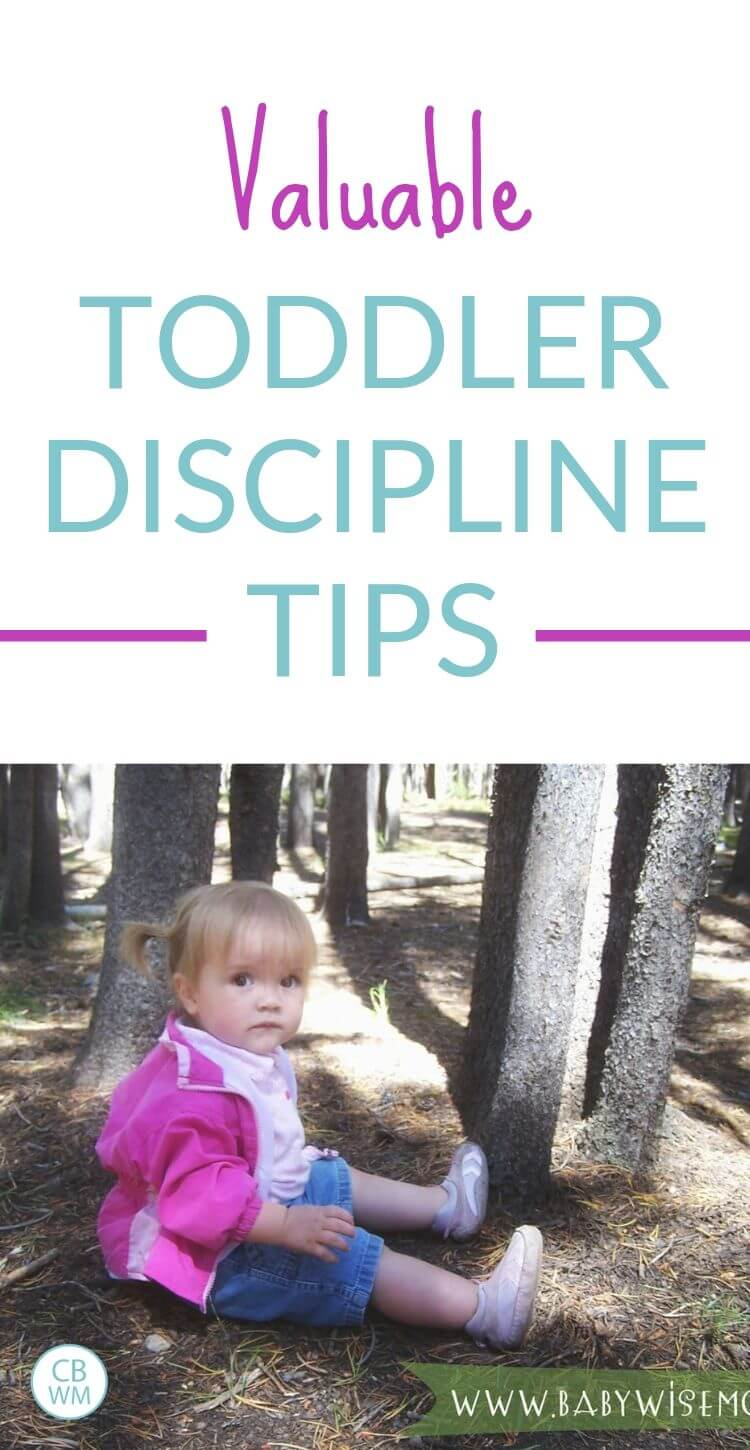 Valuable toddler discipline tips pinnable image