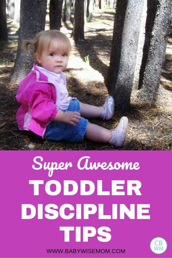 Pinnable image about toddler discipline