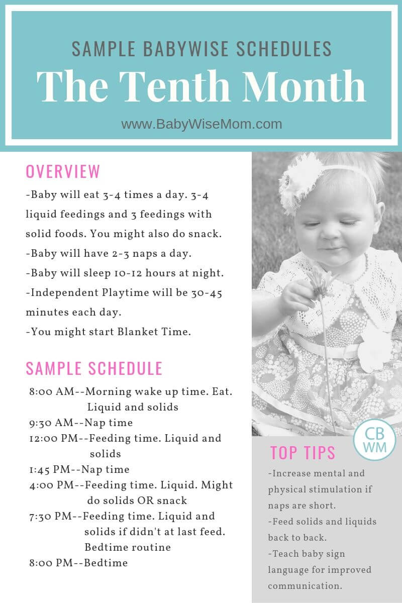 The Tenth Month Sample Baby Schedule Graphic