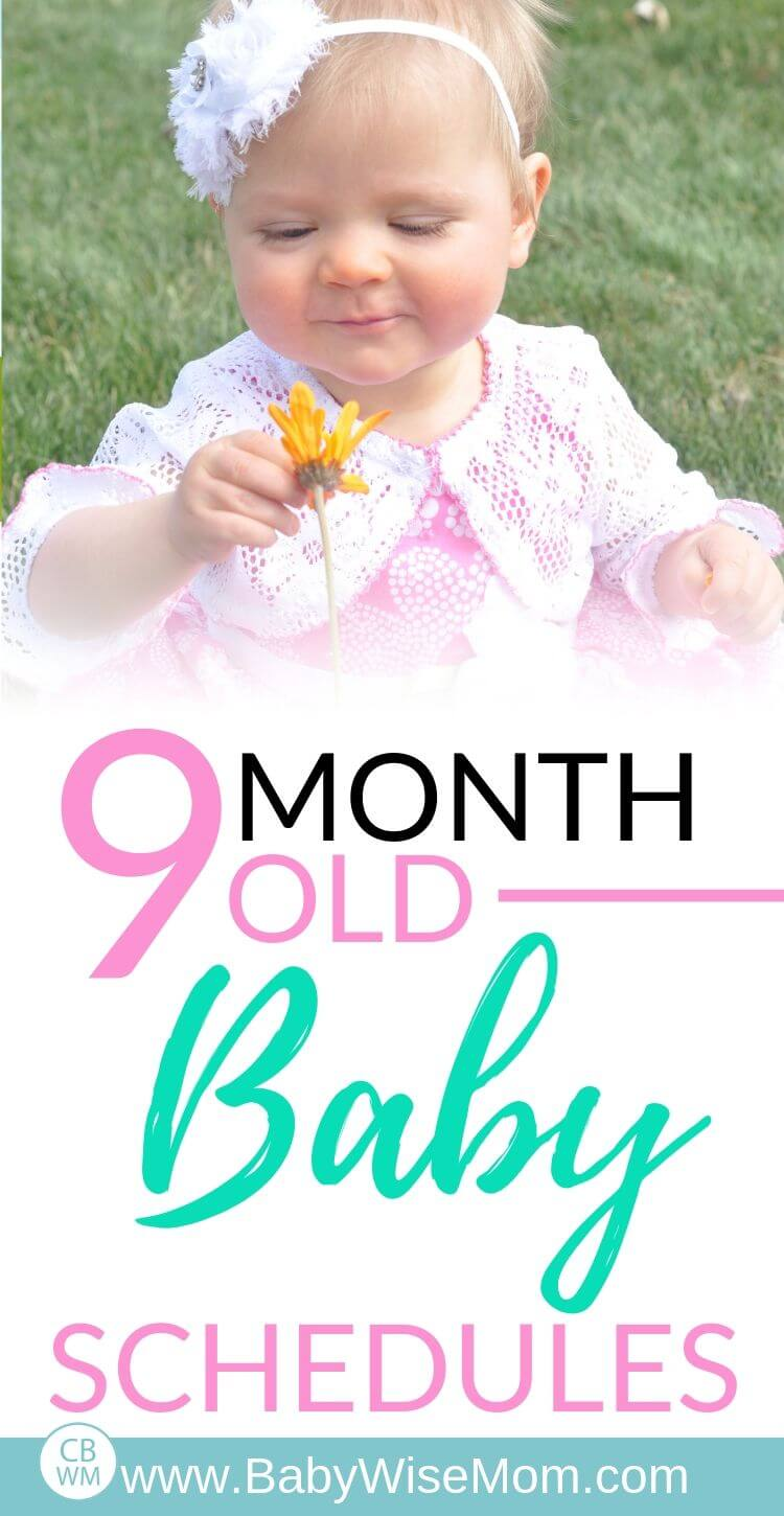 9 Month Old Baby Schedules pinnable image