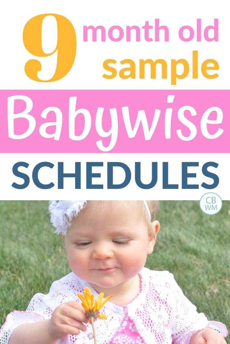 9 month old sample Babywise schedules pinnable image