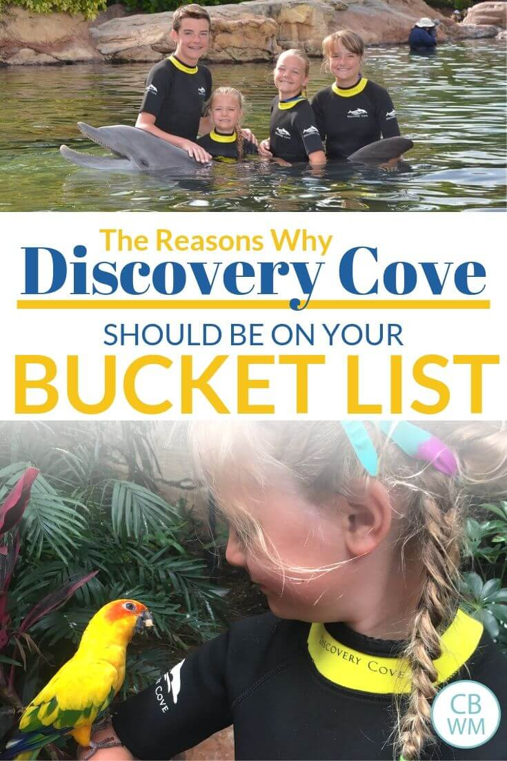 Discovery Cove Bucket List Pinnable Image