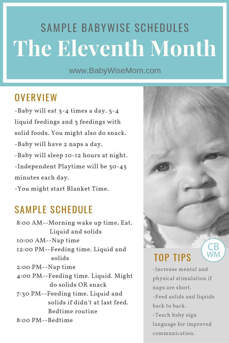 10 Month Old Baby Schedule Graphic
