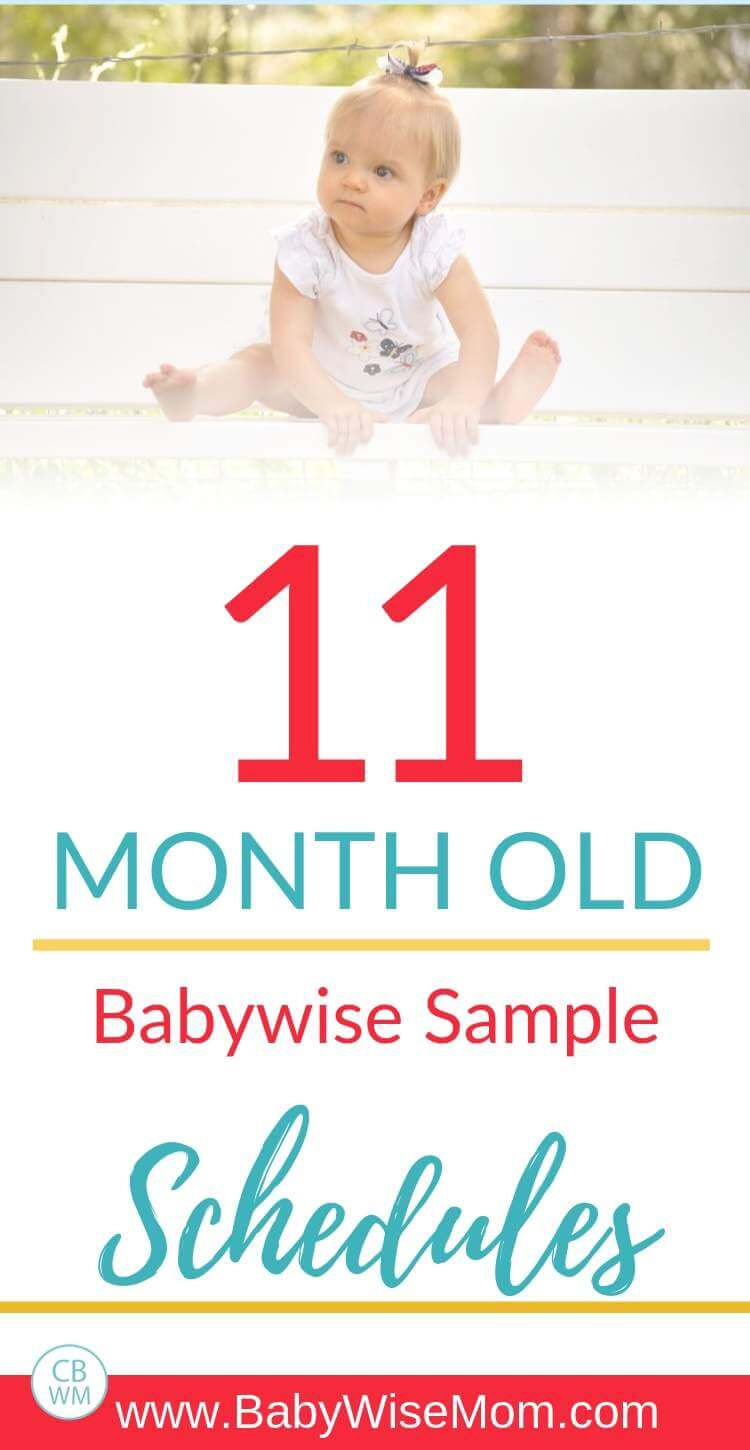 11 month old babywise schedules Pinnable image