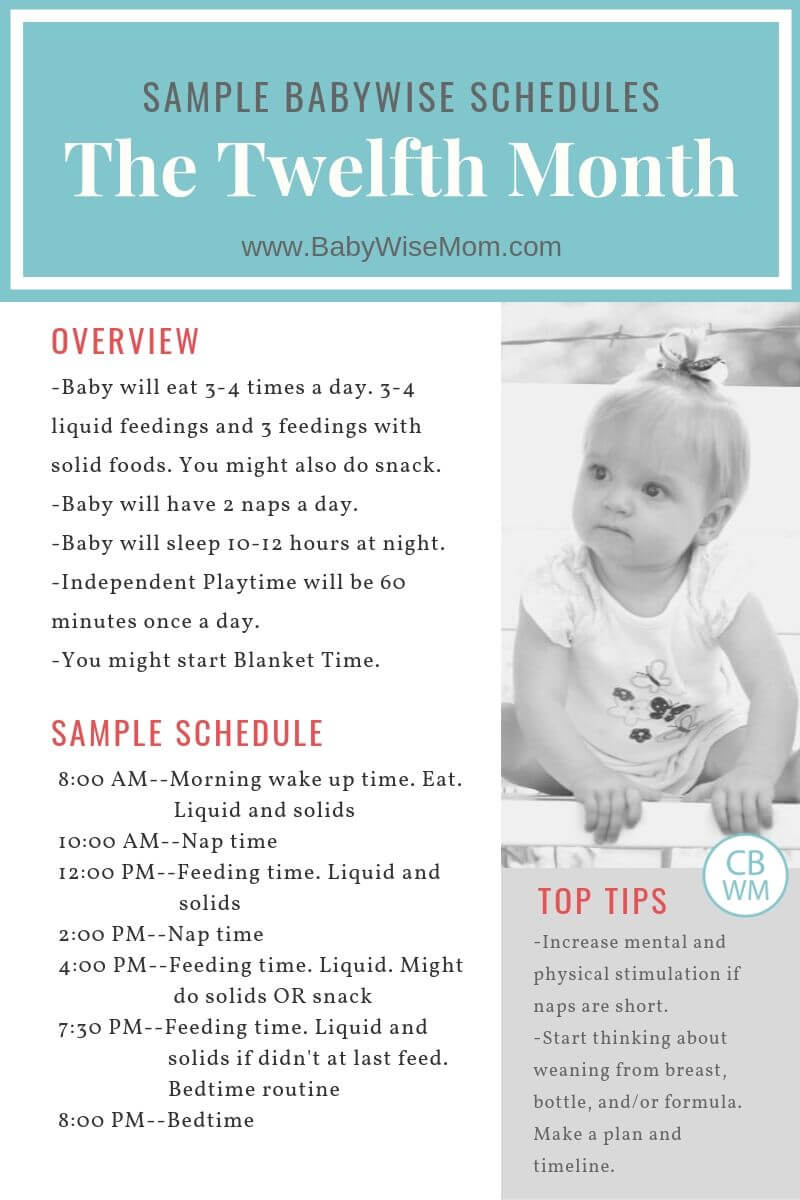 Babywise twelfth month sample schedule graphic