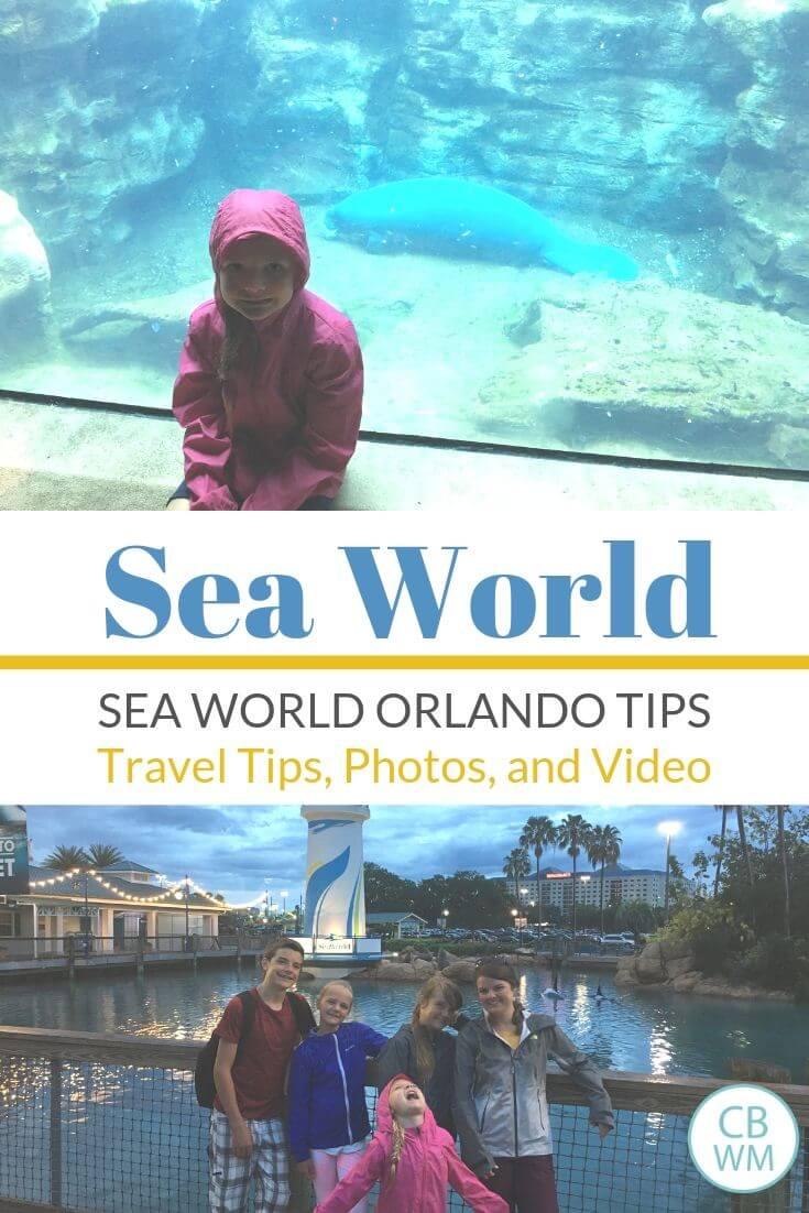 Sea World Travel Tips pinnable image