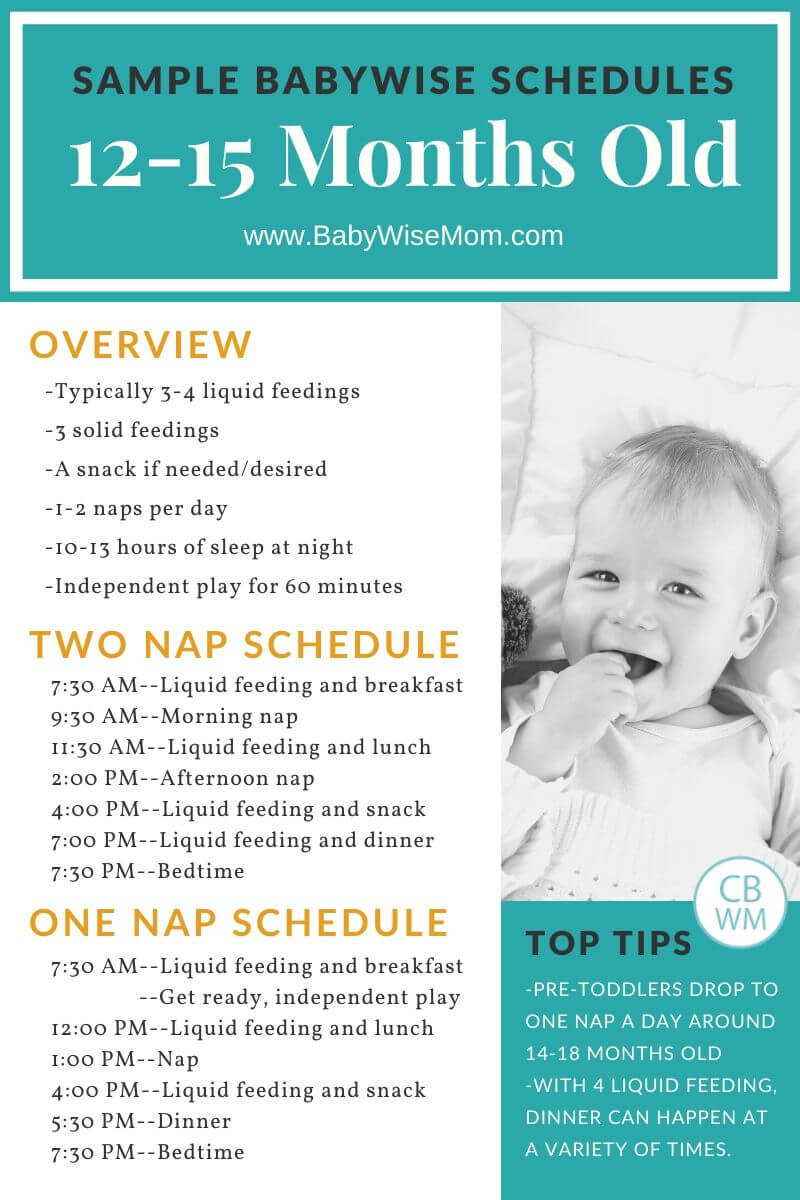 12-15 month old sample schedules Pinnable Graphic