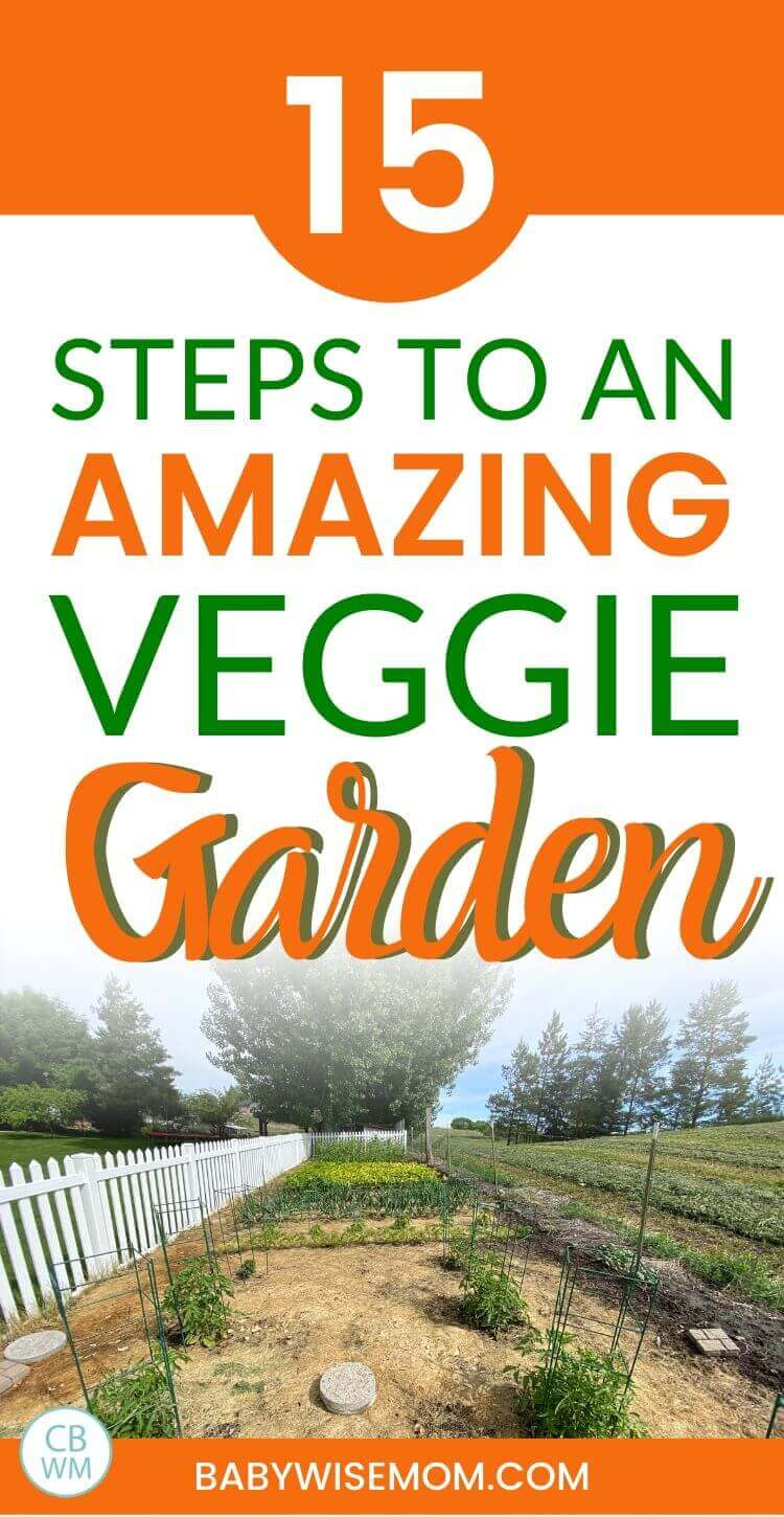 15 steps to an amazing veggie garden pinnable image
